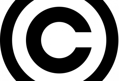 Claimant's Guide to Copyright Infringement
